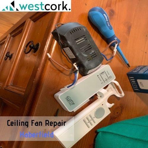 Ceiling Fan Repair Haberfield